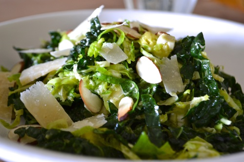 kale sprout close