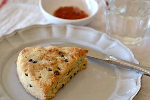 paleo scone close