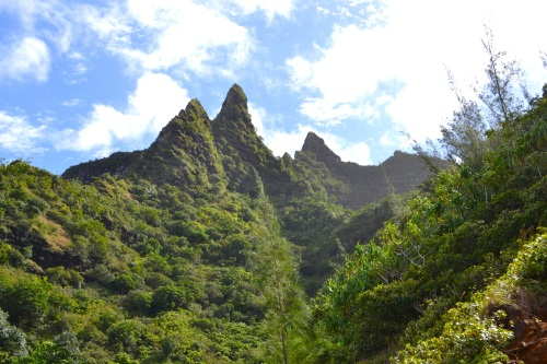 The rugged peaks of the Na Pali coastline.