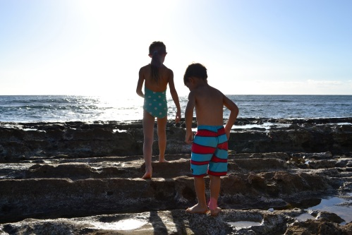 Exploring the tide pools at Salt Pond Park.