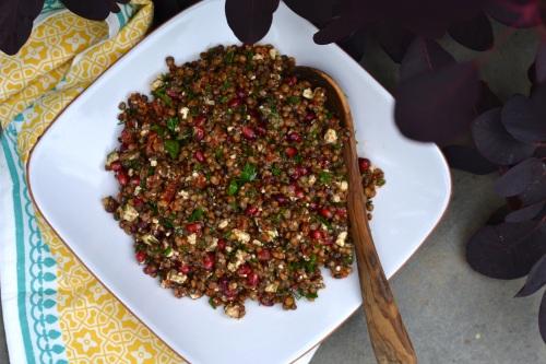 lentil above