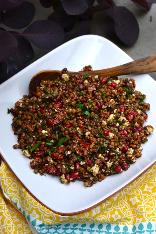 lentil above2